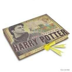 Caixa de Artefatos Harry Potter Oficial