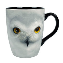Caneca Coruja Edwiges 3D Oficial Harry Potter