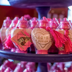 PORCAO 247x247 - Porção do Amor Líquido Doce Harry Potter Oficial